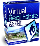 Virtual Real Estate Agent